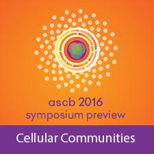 cellular-communities